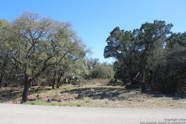 1442 Bob White Dr, Spring Branch, TX 78070 (MLS #1370059) :: Magnolia Realty