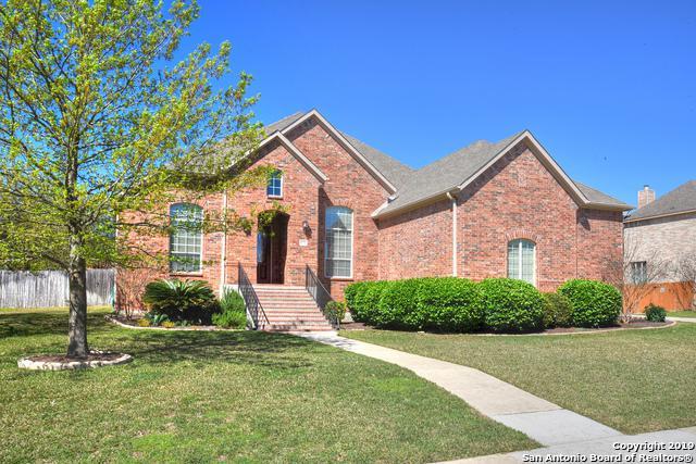 211 Bushbuck Path, San Antonio, TX 78258 (MLS #1370167) :: Alexis Weigand Real Estate Group