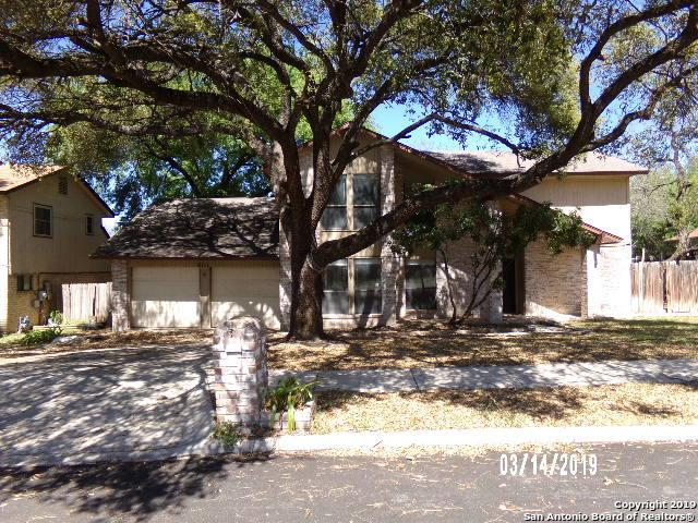 6111 Stirrup Lane, San Antonio, TX 78240 (MLS #1370404) :: Alexis Weigand Real Estate Group