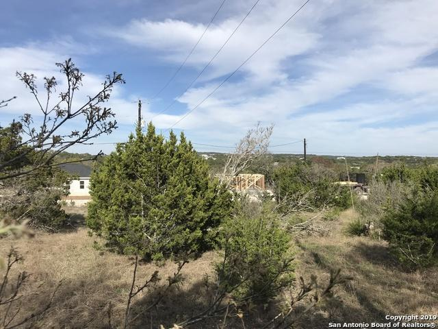 418 Cimarron, Spring Branch, TX 78070 (MLS #1370627) :: The Mullen Group | RE/MAX Access