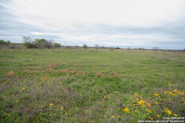 (11 +/- ACRES) St Hwy 97 E, Floresville, TX 78114 (MLS #1370638) :: The Mullen Group | RE/MAX Access