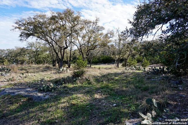 1502 Bella Vista, Canyon Lake, TX 78133 (MLS #1370876) :: Berkshire Hathaway HomeServices Don Johnson, REALTORS®