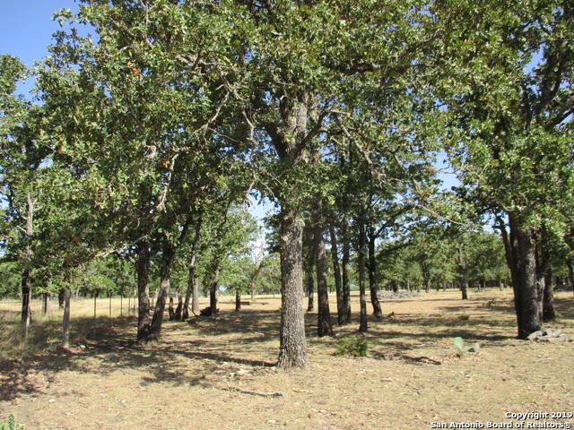 1053 Antelope Run, Medina, TX 78055 (MLS #1371061) :: Alexis Weigand Real Estate Group
