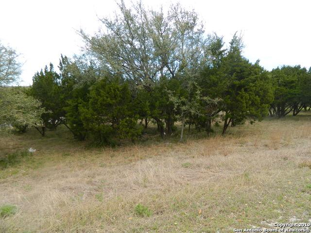 25402 Singing Rain, San Antonio, TX 78260 (MLS #1371075) :: Magnolia Realty