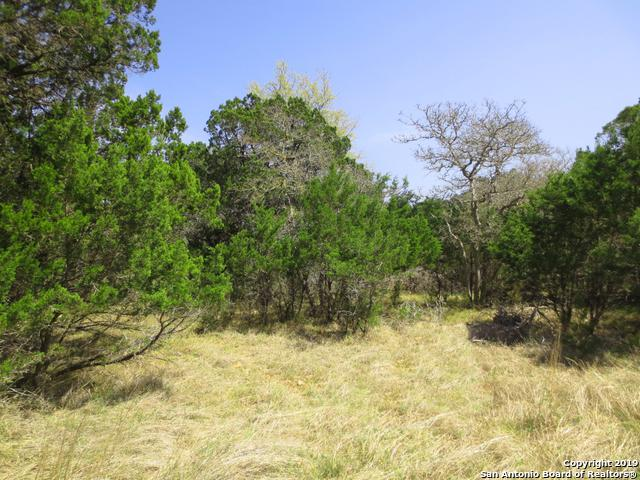 LOT 15 Mountain Vw, Pipe Creek, TX 78063 (#1371096) :: The Perry Henderson Group at Berkshire Hathaway Texas Realty