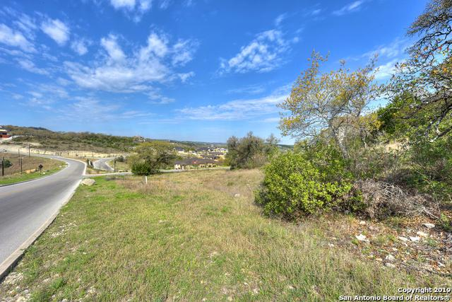 9807 Ivory Canyon, San Antonio, TX 78255 (MLS #1371145) :: The Mullen Group | RE/MAX Access