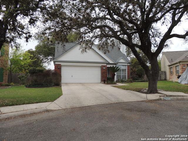 7023 Coral Spgs, San Antonio, TX 78250 (MLS #1371269) :: Exquisite Properties, LLC