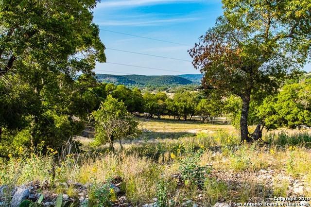 225 Spring Lakes Pkwy, Ingram, TX 78025 (MLS #1371279) :: Alexis Weigand Real Estate Group