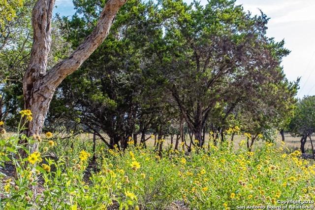575 Cypress Estates Pkwy W, Ingram, TX 78025 (MLS #1371283) :: Alexis Weigand Real Estate Group