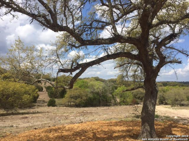 LOT 1712 Cattle Dell, New Braunfels, TX 78132 (MLS #1371402) :: Magnolia Realty