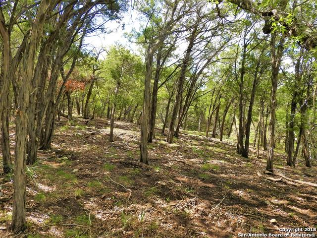 LOT 286 Pr 1709, Mico, TX 78056 (MLS #1371567) :: Alexis Weigand Real Estate Group