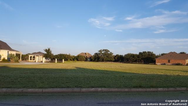 25938 Kalksteine Loop, New Braunfels, TX 78132 (MLS #1371607) :: Alexis Weigand Real Estate Group