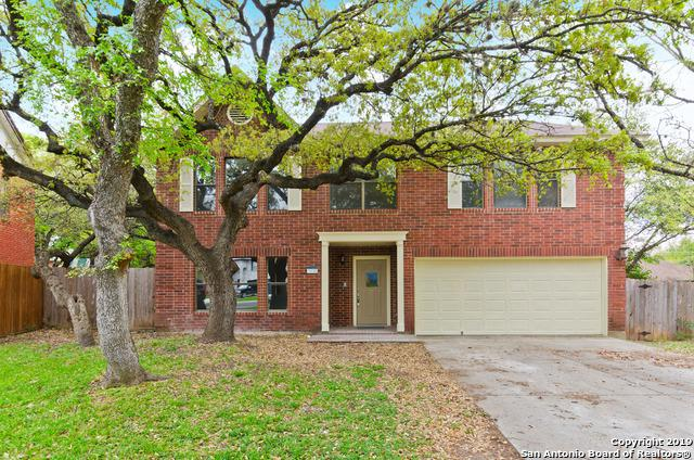 3530 Elk Cliff Pass Dr, San Antonio, TX 78247 (MLS #1371737) :: Alexis Weigand Real Estate Group