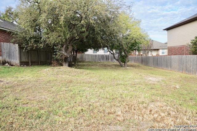 539 Point Valley, San Antonio, TX 78253 (MLS #1371793) :: Alexis Weigand Real Estate Group