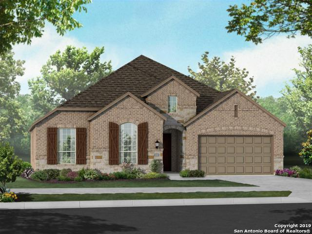10310 Cactus Hills, San Antonio, TX 78254 (MLS #1371829) :: Alexis Weigand Real Estate Group
