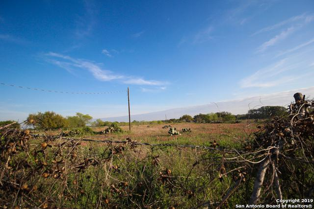 959 County Road 768, Devine, TX 78016 (MLS #1372100) :: Tom White Group