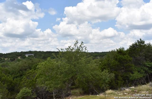 1286 Rotherman, Canyon Lake, TX 78133 (MLS #1372121) :: Vivid Realty
