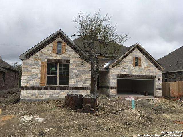 119 Arbor Woods, Boerne, TX 78006 (MLS #1372196) :: Keller Williams City View
