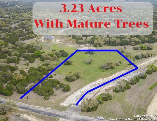 791 Rayner Ranch Blvd, Spring Branch, TX 78070 (MLS #1372325) :: Tom White Group