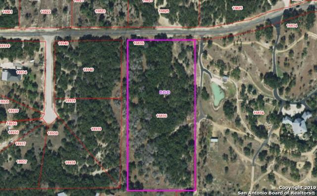 134 Stallion Estate, Spring Branch, TX 78070 (MLS #1372352) :: Alexis Weigand Real Estate Group
