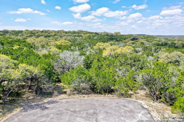 1090 W Branch Crossing, Spring Branch, TX 78070 (MLS #1372403) :: Tom White Group