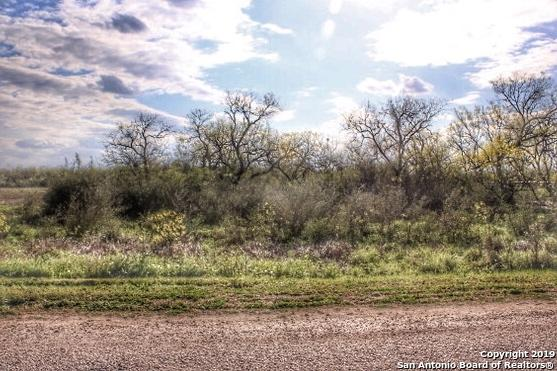 201 Gentle Breeze, Floresville, TX 78114 (MLS #1372465) :: Alexis Weigand Real Estate Group