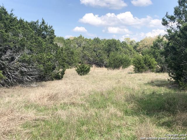 221 Greystone Cir, Boerne, TX 78006 (MLS #1373567) :: Magnolia Realty