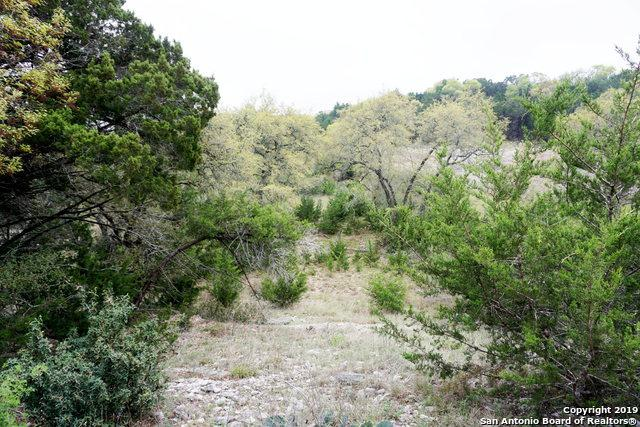 611 Aragon Ct, Canyon Lake, TX 78133 (MLS #1373741) :: Neal & Neal Team