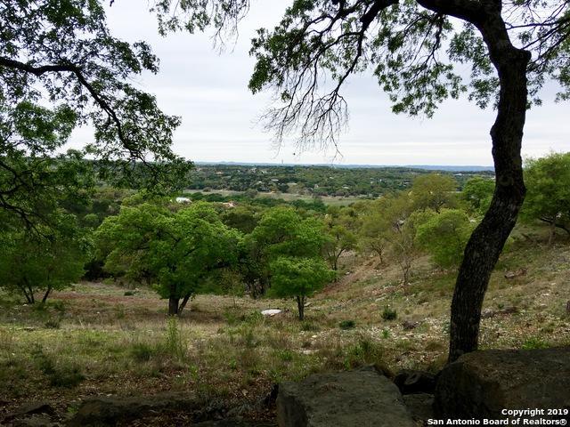 2480 Bella Vista, Canyon Lake, TX 78133 (#1373984) :: The Perry Henderson Group at Berkshire Hathaway Texas Realty