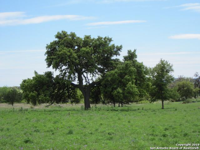 TBD Laguna Rd., Bandera, TX 78003 (MLS #1373996) :: The Gradiz Group