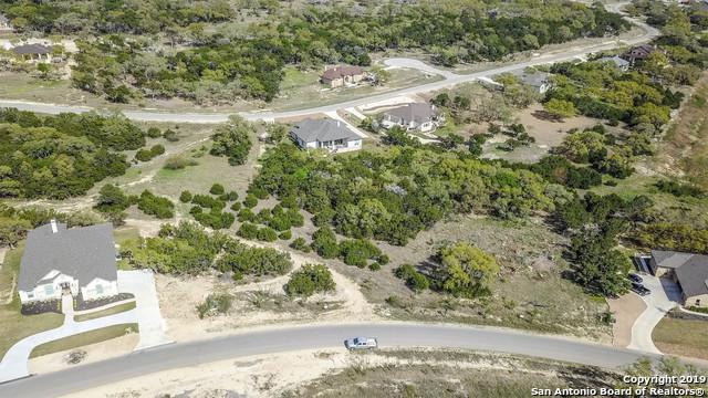 1394 Merlot, New Braunfels, TX 78132 (MLS #1374039) :: Alexis Weigand Real Estate Group