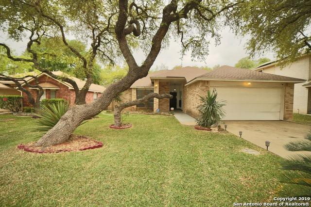 1523 Saxonhill Dr, San Antonio, TX 78253 (MLS #1374052) :: Alexis Weigand Real Estate Group