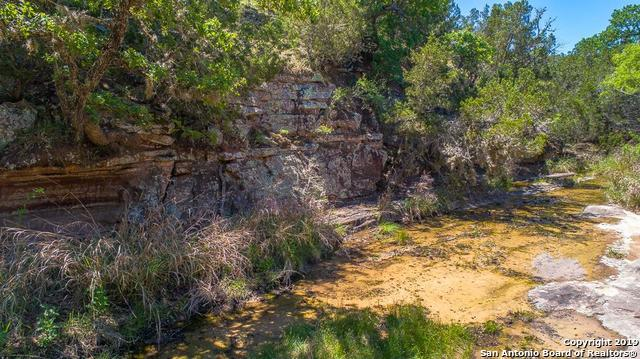 1501 Homer Young Rd, Fredericksburg, TX 78624 (MLS #1374455) :: Glover Homes & Land Group