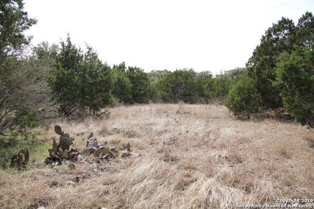0 Saddle Tree, Bandera, TX 78003 (MLS #1374514) :: Alexis Weigand Real Estate Group