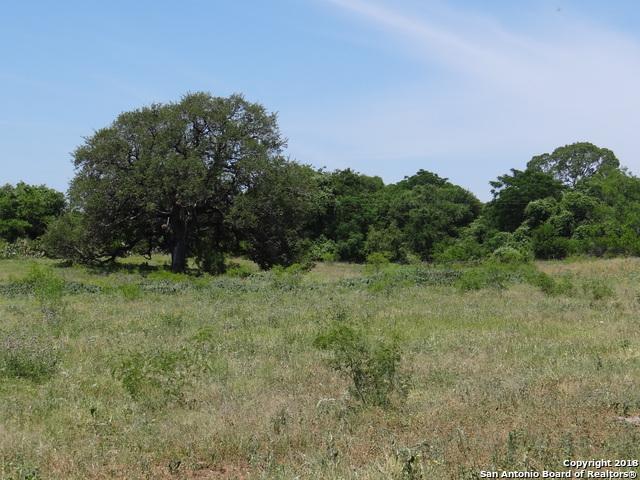 00 Tank Hollow Rd., Poteet, TX 78065 (MLS #1374538) :: Tom White Group
