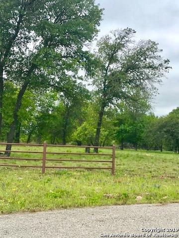 LOT 318 County Road 6875, Natalia, TX 78059 (MLS #1374569) :: Berkshire Hathaway HomeServices Don Johnson, REALTORS®