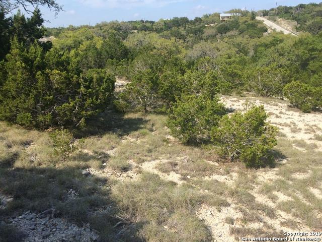 1581 Primrose Path, Canyon Lake, TX 78133 (MLS #1375287) :: Alexis Weigand Real Estate Group