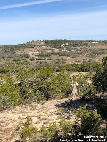 LOT 129 & 130 Lynx Cove & Ocelot Trail, Blanco, TX 78606 (MLS #1375432) :: BHGRE HomeCity