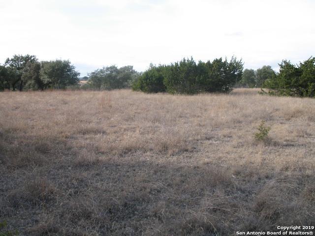 103 N Jesse Stiff, Blanco, TX 78606 (MLS #1375449) :: Alexis Weigand Real Estate Group