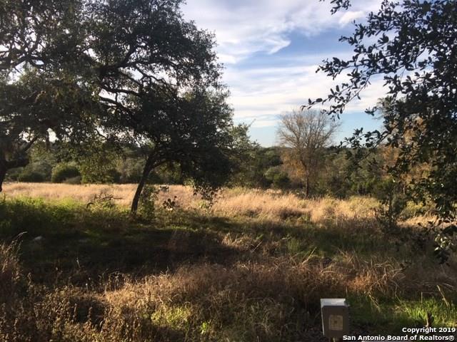 951 Purgatory Rd, New Braunfels, TX 78132 (MLS #1375784) :: Tom White Group