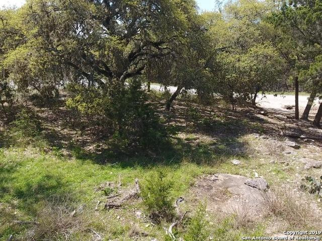 1743 Westview Court Dr, Canyon Lake, TX 78133 (MLS #1375790) :: Alexis Weigand Real Estate Group
