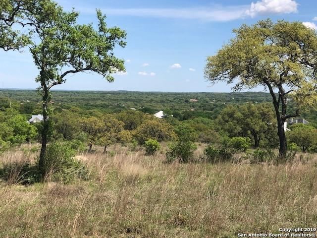 104 Caprock Circle, Boerne, TX 78006 (MLS #1375972) :: Alexis Weigand Real Estate Group
