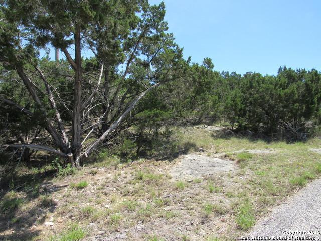 1509 Lakeshore Dr, Canyon Lake, TX 78133 (MLS #1376014) :: Erin Caraway Group