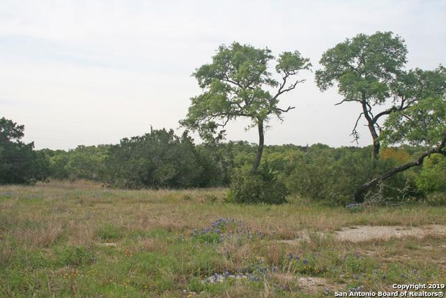 269 County Road 267, Mico, TX 78056 (MLS #1376098) :: Alexis Weigand Real Estate Group