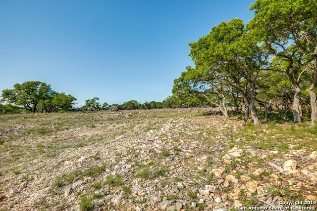 2539 Black Bear Dr, New Braunfels, TX 78132 (MLS #1376256) :: Alexis Weigand Real Estate Group