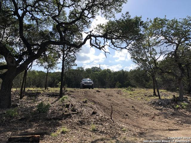 738 Stagecoach Trail, Spring Branch, TX 78070 (MLS #1376616) :: Erin Caraway Group