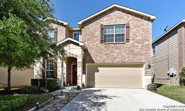 27323 N Lasso Bnd, San Antonio, TX 78260 (MLS #1376628) :: Alexis Weigand Real Estate Group