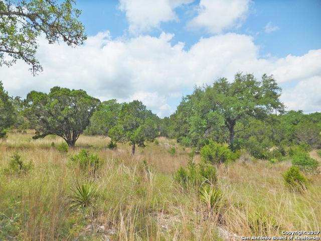 1928 (LOT134135 Split Mtn, Canyon Lake, TX 78133 (MLS #1376973) :: Alexis Weigand Real Estate Group