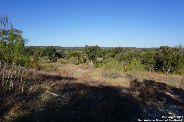 726 Caballo Trail, Canyon Lake, TX 78133 (#1376991) :: The Perry Henderson Group at Berkshire Hathaway Texas Realty