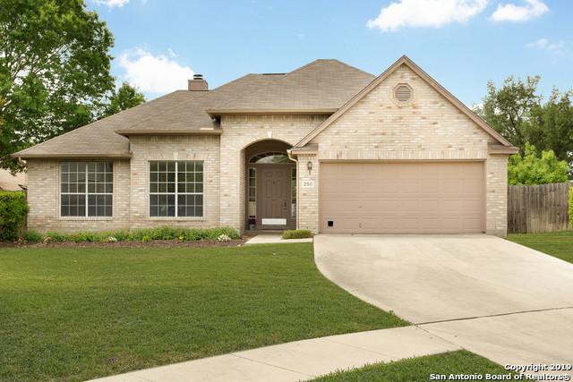 250 Tapwood Ln, Cibolo, TX 78108 (MLS #1377416) :: River City Group